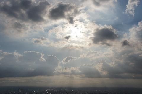光のパイプオルガン響く空