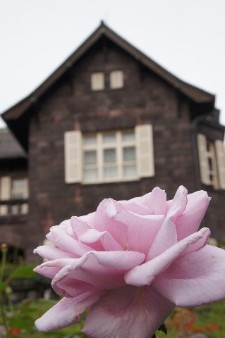 洋館とバラ・ブルーライト
