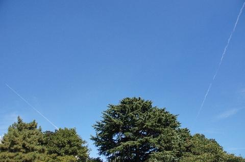 二本の飛行機雲