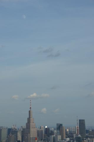 東京タワーと月