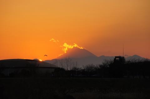 富士山とカモ?