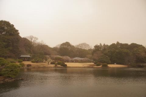 煙霧に煙る日本庭園