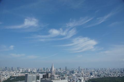 マンモスの頭の化石が次々と出てきたような雲