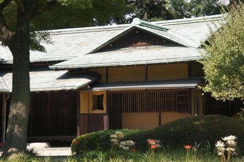 諏訪の茶屋前のヒガンバナ