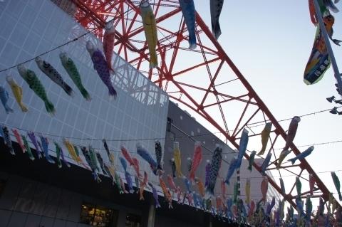 東京タワーの鯉のぼり2