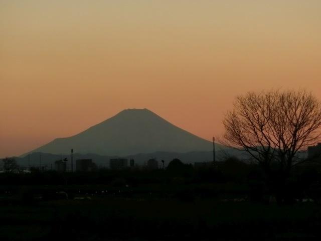 夕暮れ路上富士3
