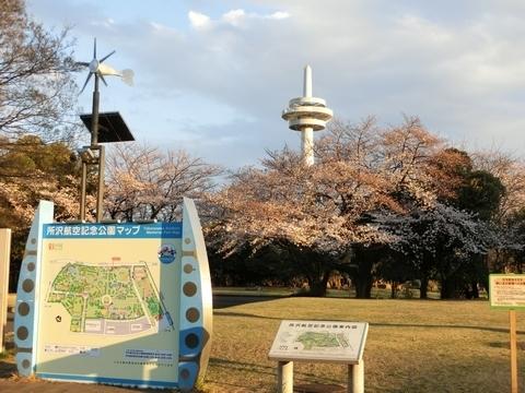 公園マップと放送塔と桜