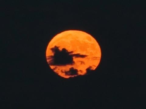 上りたての潰れた満月