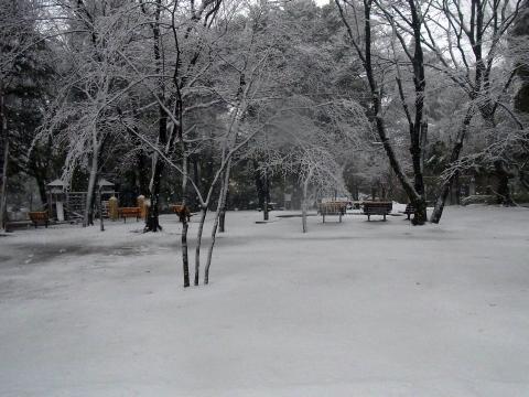 真っ白な地面