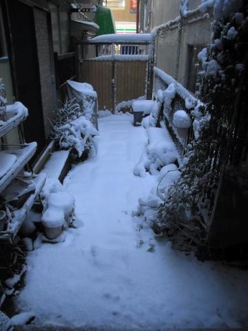 朝の玄関前