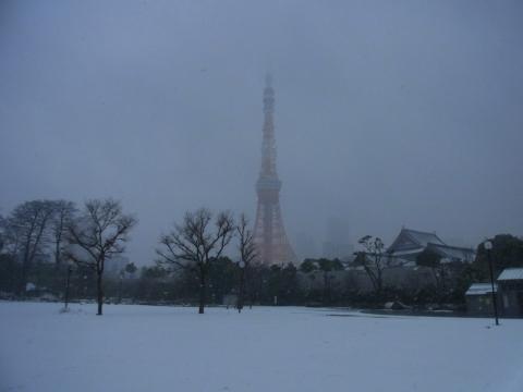 雪の芝公園から東京タワー