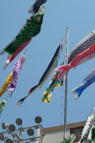 さんまのぼりと大漁旗