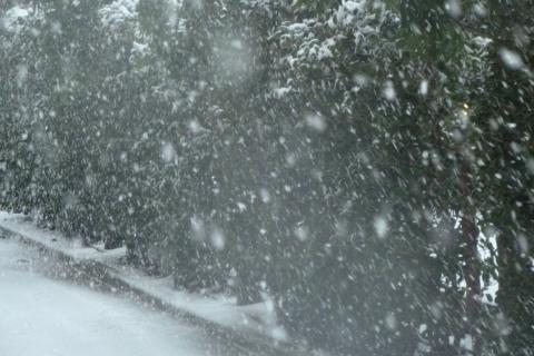 吹雪のように