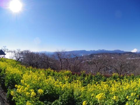 富士山から四阿まで