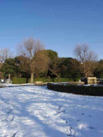 雪と十日月