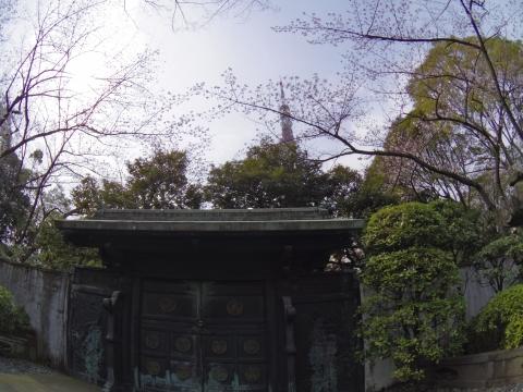 鋳抜門と桜と東京タワー