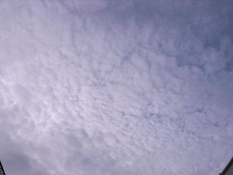 密集したうろこ雲