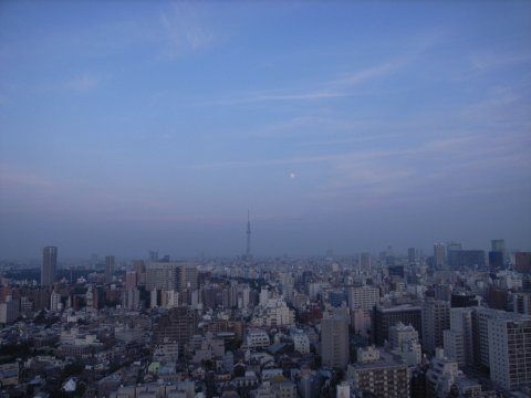 黄昏に東京スカイツリーと小望月