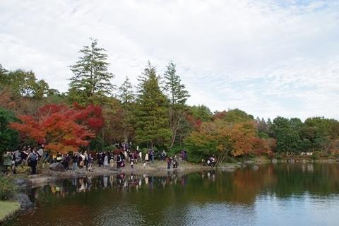 回遊式庭園の紅葉