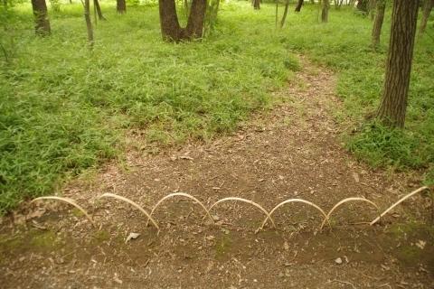 竹の簡易柵4