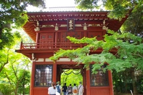 本土寺の仁王門