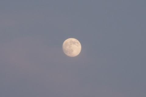 ほんのり夕焼け色の小望月
