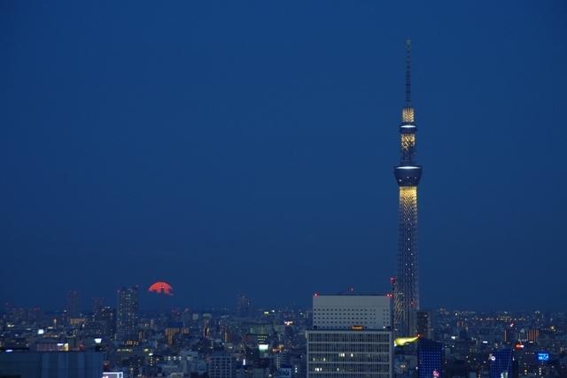 上りたての満月と東京スカイツリー