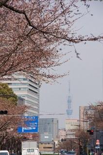 靖国通りから東京スカイツリー
