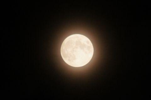 静かに微笑むほぼ満月