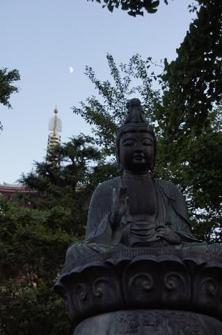 聖観音菩薩像と九夜月