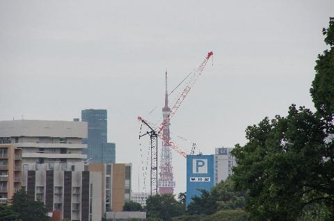 東京タワーが・・・