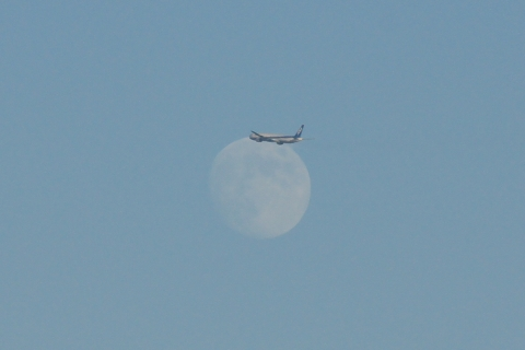 月の前を横切って