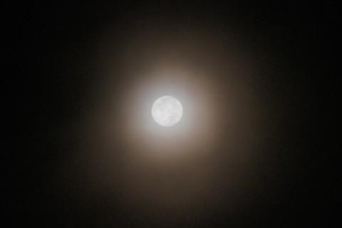 満月と月光環