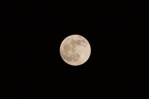夕方の満月