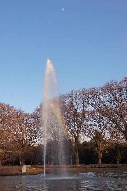 噴水の虹と月