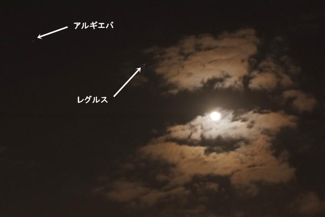 しし座の星と寝待月