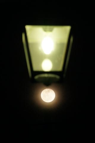 街灯と居待月