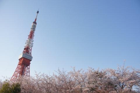 ザ・プリンスタワー東京からの眺め