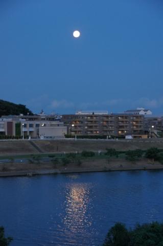 川面の月明かり