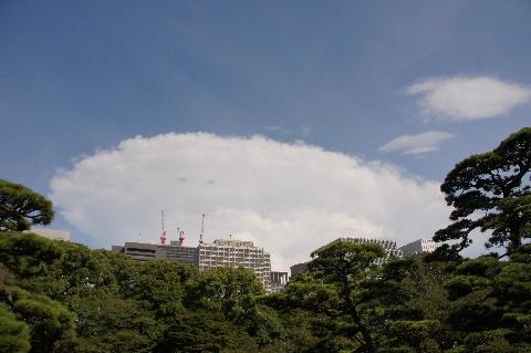 発達する積乱雲