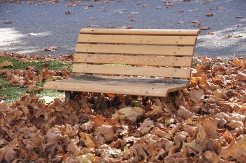 落ち葉に埋もれるベンチ