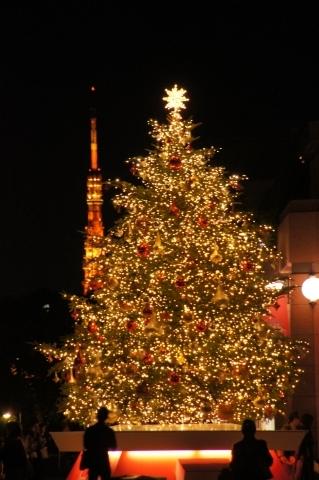 クリスマスツリーと肩を並べる東京タワー