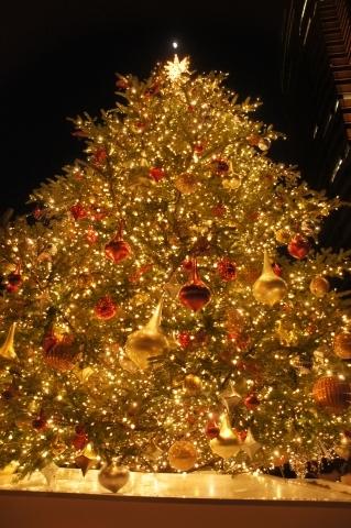 クリスマスツリーと十日月