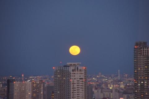 上りたての満月