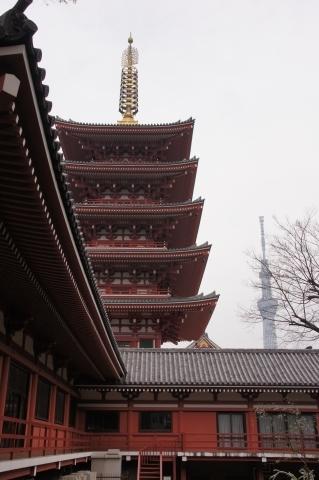 五重塔と東京スカイツリー