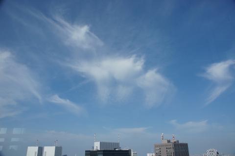 空を渡る鶴が連なったような雲