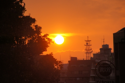 顔を出した太陽