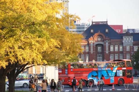 黄葉したイチョウと東京駅3