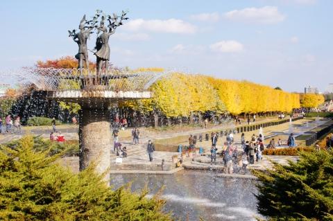 噴水の虹とイチョウ並木