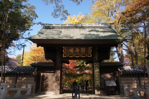九品仏浄真寺の総門